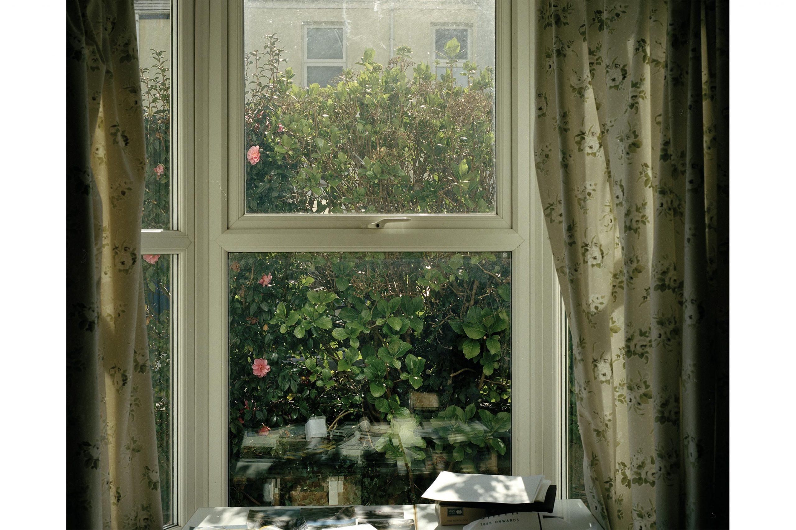 Spring Window 2.jpg